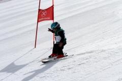 Ski Vereinsrennen 2014